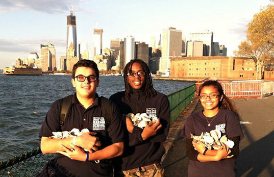 New York Harbor School Kids Suggest Oysters As Storm Surge Protector