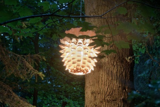Schneid Enlightment, poplar lamp, wooden lamp, pendant lamp, green lighting