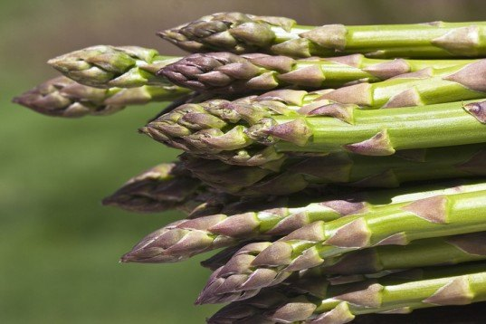green design, eco design, sustainable design, asparagus healing properties, asparagus hangover cure, Institute of Medical Science, Jeju National University, Institute of Food Technologists