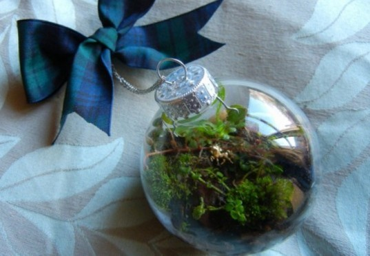 Terrarium, top 10, DIY, holiday, gift guide, gardening, plants, christmas