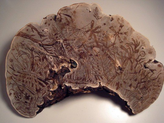 corey corcoran, mushroom, artist conk. etchings, illustration, engraving, plants, insects, figures