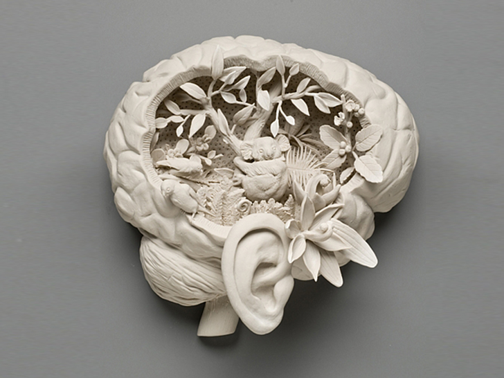 Kate Macdowell Masterfully Crafts Porcelain Sculptures