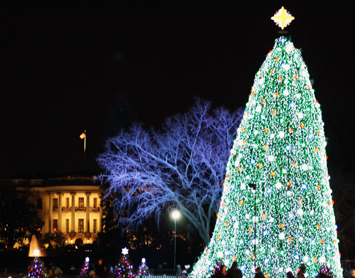 The White House's LED-Illuminated National Christmas Tree
