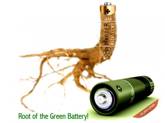 battery, madder root, purpurin, city college of new york, rice university, eco battery, lithium ion
