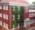 Ambius' Beautiful Green Wall at Queens University of Charlotte Features a Double-Helix Design