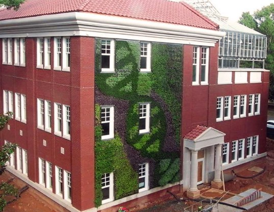 ambius green walls, green walls garden wall, large green walls, college green walls, living walls, living art, plant walls