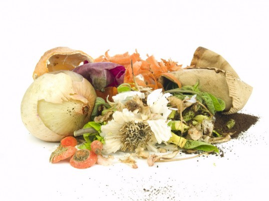 naturemill, composting, compost, freeser compost, hot to start a compost, compost ideas, compost in an apartment, compost in a small space, sotring your organic scraps, storing your compost scraps, diy compost