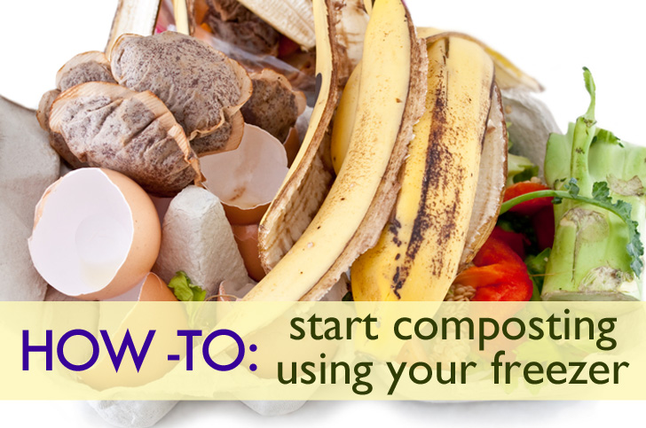 How To Start An Odor Free Freezer Compost Bin As A City Or Small