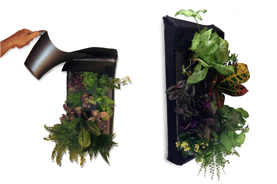 Incroyable The Farm Buddy Makes It Easy To Grow Your Own Large Living Walls Indoors |  Inhabitat   Green Design, Innovation, Architecture, Green Building