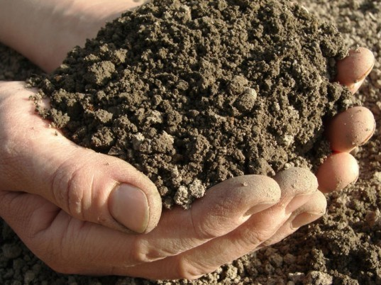 Soil, topsoil, fertile soil, dirt, handfuls of soil