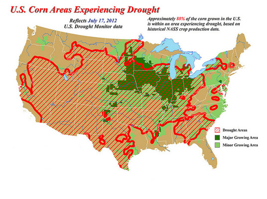 2012 US Drought, Kentucky drought, Illinois crops, Missouri crop yield, Kansas Crop Yields, Kansas drought, Illinois drought, US corn yields, US crop yields, USDA reports, USDA, drought damage, US crop drought