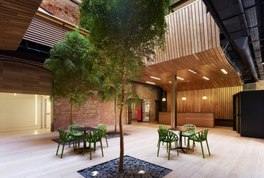 MVN Arquitectos, Madrid, Spain, Botín Foundation, industrial building, renovation, daylight, natural vegetation, atrium, light well, Juan Luis Líbano