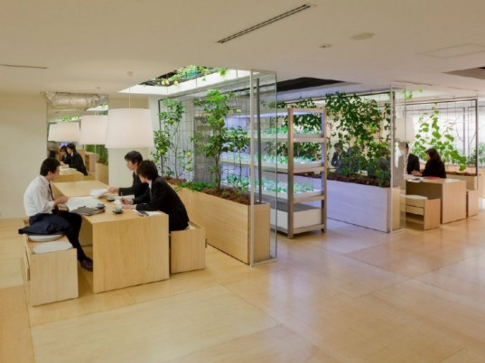 Pasona HQ, Kono Designs, vertical garden, urban farm, eco office, living wall, urban farming, green renovation