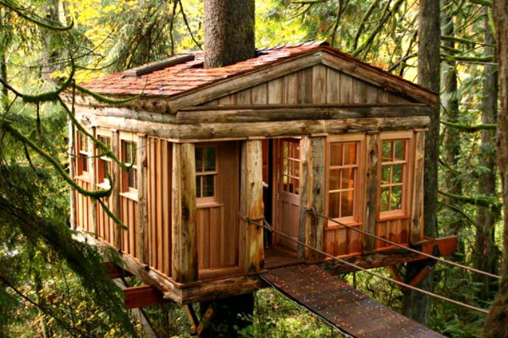Treehouse Point Eco Resort Helps You Reconnect With Nature in Washington