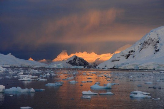 arctic sea ice, arctic ice, greenland, north pole, melting ice, global warming