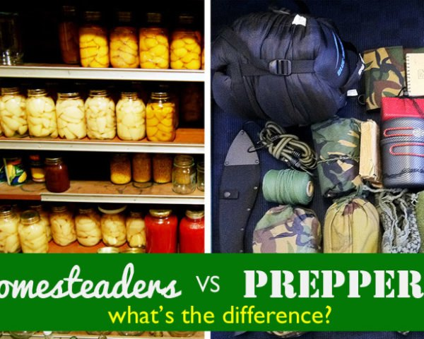 Homesteaders Vs Preppers What S The Difference