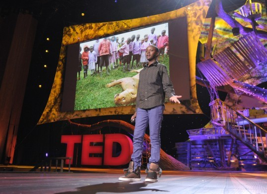 TED conference, Richard Turere, Kenya, lions, Nairobi National Park, livestock, endangered species, scholarship, children genius, invention, child inventors