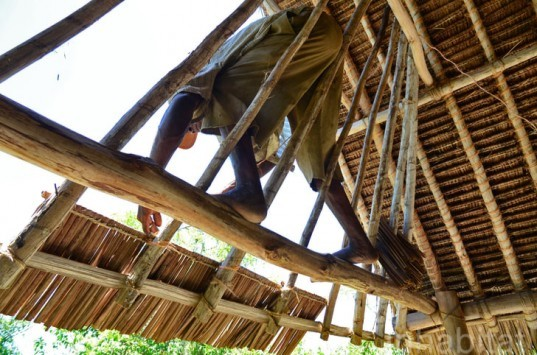 Andy Barbour, Diani Beach, Kenya, eco-tourism, backpackers, green design, sustainable design, eco-design, makuti roofers, palm roof, thatched roof, treehouses, Kenya, Africa, Coral Rag Forest, tourism, sustainable materials, sustainable building, natural ventilation, solar heated water, wildlife