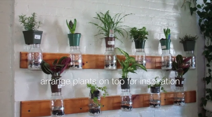 diy indoor herb garden diy video model summer rayne oakes shows you how to make - Diy Herb Garden Ideas