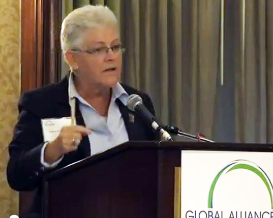 gina mccarthy, epa, head, announcement, obama, air and radiation office