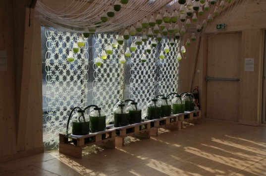 Loop.pH, Algae Curtain-a, Photosynthesizing Textile, Bio-Fuel, algae fuel, algae curtain, eco energy, green energy, clean energy