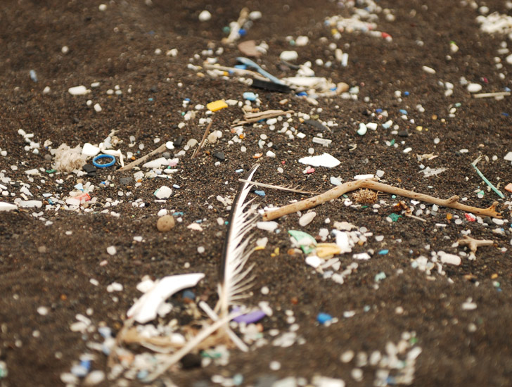 The Fallacy Of Cleaning The Gyres Of Plastic With A