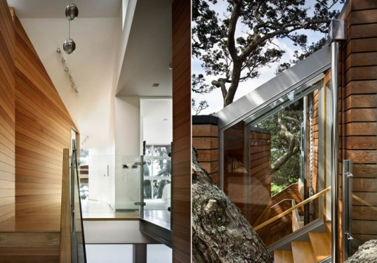 Bossley Architects, New Zealand, Thorne Bay House, Sustainable Home, Beach House, Architecture, Treehouse