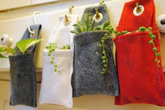 DIY, plant, hanging, wall, interior, green, how-to, felt, succulent, office, greenery, planter