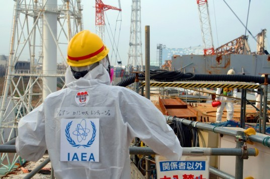 International Atomic Energy Agency, IAEA, fukushima, fukushima nuclear disaster, nuclear disaster, nuclear energy, japan, fukushima clean up