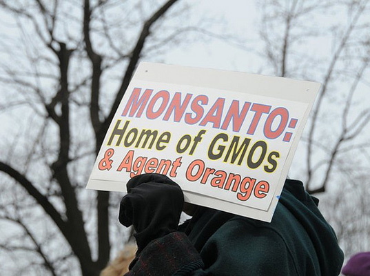 Monsanto Rider, HR 933 Monsanto, Consolidated and Further Continuing Appropriations Act, Monsanto GMOs, GMO litigation, GMO laws, genetically modified organisms, Monsanto Bill, agriculture legislation, Senator Roy Blunt