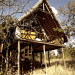 Out of Africa, Ngong House, Nairobi, Kenya, Meryl Streep, treehouses, eco-luxe, safari destination, nairobi national park, giraffes, Rothschild giraffe, upcycling, natural materials, bespoke tree house, luxury tree house, boutique hotel,