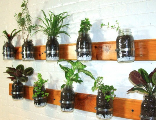 DIY Mason Jar Herb Garden, diy, earth day diy, earth day, do it yourself, crafts, earth day crafts, make it yourself, green design, eco design, sustainable design, recycled design, recycled crafts