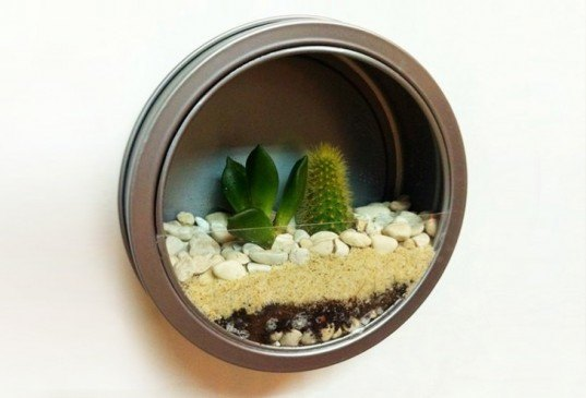 Magnetic Wall Terrarium, diy, earth day diy, earth day, do it yourself, crafts, earth day crafts, make it yourself, green design, eco design, sustainable design, recycled design, recycled crafts