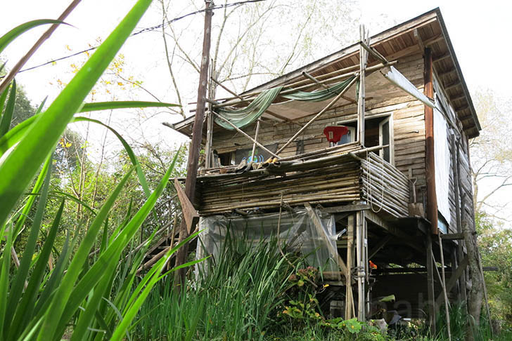 PHOTOS: Living the Green Life at an 'Echo Village' Immersed in Buenos Aires' Delta