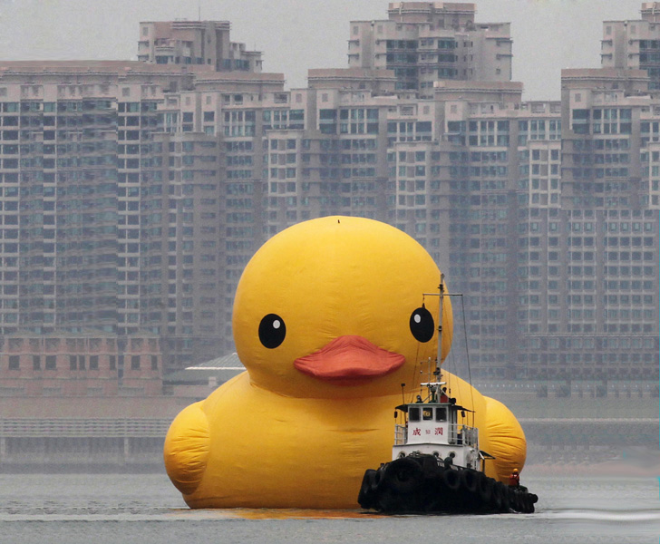 Lovely The Worldu0027s Largest Inflatable Rubber Duck Sails Into Hong Kong
