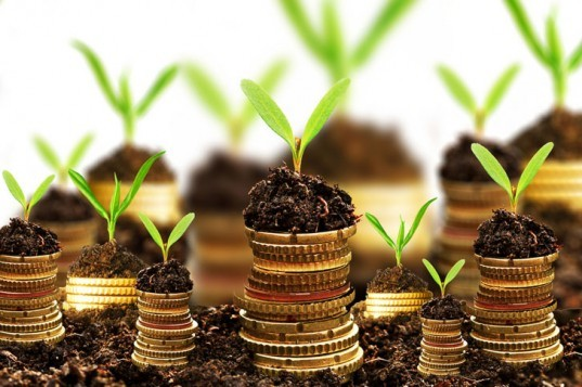 Green investments, coins, soil, green investment bank, banking, lending