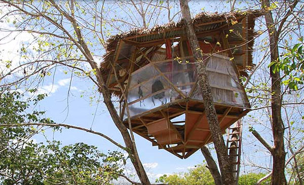 This Unique Icosahedron Treehouse In Costa Rica Cost Just
