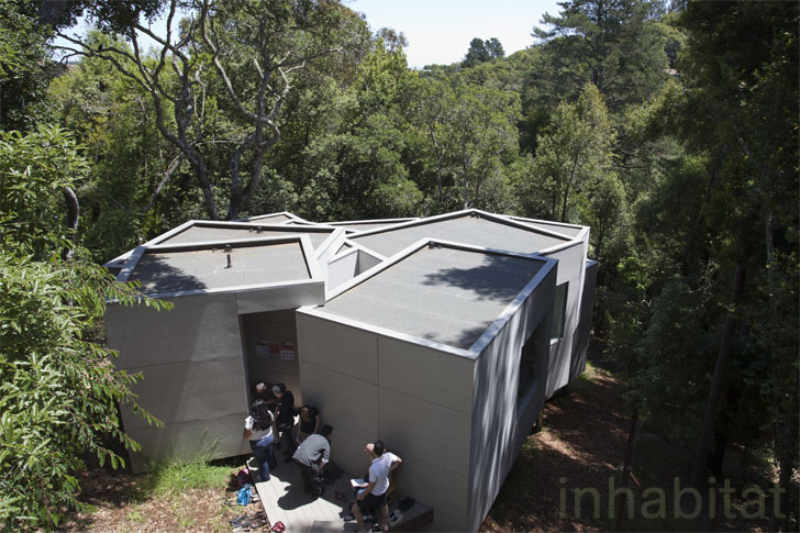 Koji tsutsui 39 s multicellular house cascades down a steep for Mill valley architects