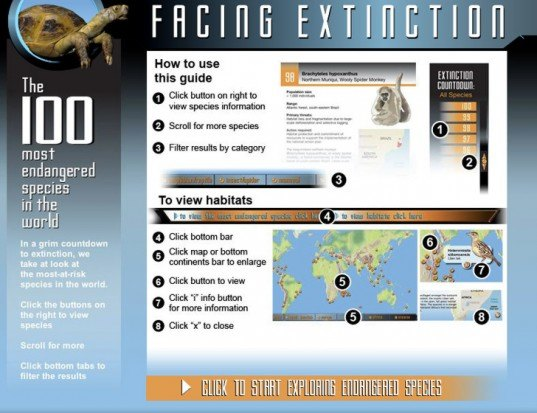 endangered species, 100 most endangered species, infographic, green graphics and packaging, environmental destruction, animals, extinct animals, conservation, wildlife, nature, environment
