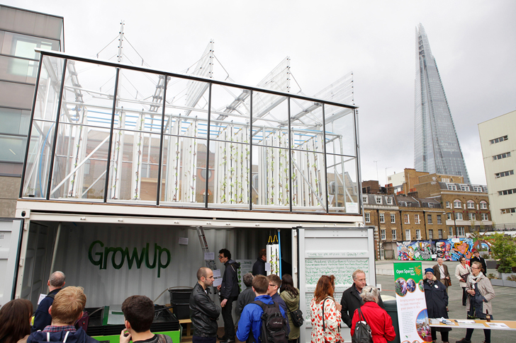 GrowUp's Aquaponic Urban Farm Produces Sustainable Fish and Vegetables in a Recycled Shipping Container