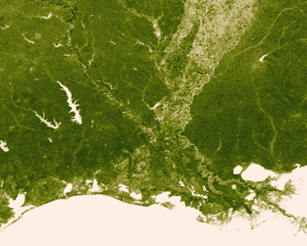 new satellite map from nasa and noaa shows all the world s vegetation inhabitat green design innovation architecture green building