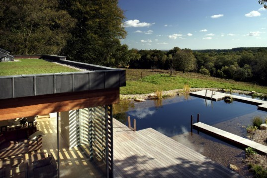 New Forest House, PAD Studio, new forest national park, green roof, earth bermed home, natural swimming pool, site sensitive