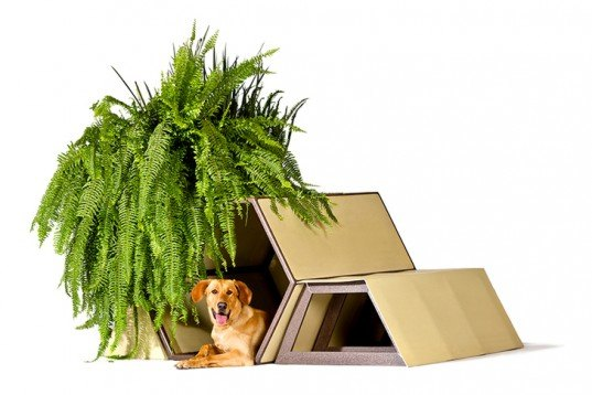Photos by Dogchitecture, Architecture For Dogs, exhibition, Esteban Suarez, BNKR, Felipe Fadón, Nuugi, shelters, dogs, animals, recycled materials, mexico, Tiny Homes, Animals, DIY, Green Materials
