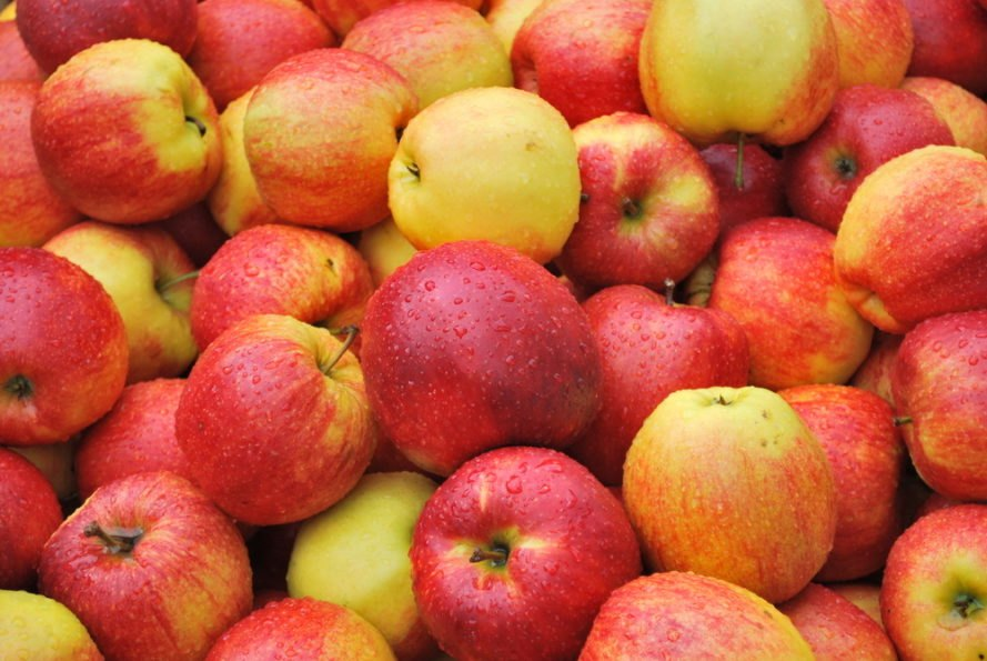 lot of red and yellow apples