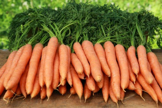carrots, storing carrots, keep your fruits and veggies fresh longer, how to keep vegetables fresh, how to keep fruit fresh, how to store vegetables, how to store fruit, how to store fruits and vegetables, keeping fruit fresh longer, storing produce, storing vegetables, sustainable food, cut food waste