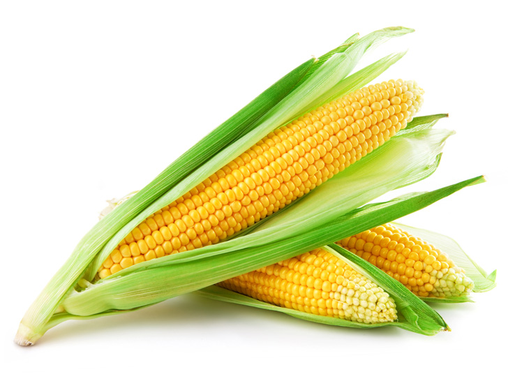 yellow corn on white background
