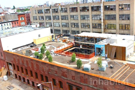 eco design, green architecture, green design, green nyc architecture, green roof, green roofs, greenpoint green, kickstarter, kickstarter green roof, kickstarter greenpoint, kickstarter headquarters, Ole Sondresen, Ole Sondresen Architects, sustainable design