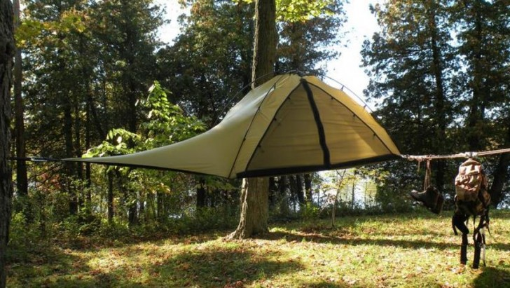 tents tree tents c&ing treehouses design nature trees adventure : tree tent hammock - memphite.com