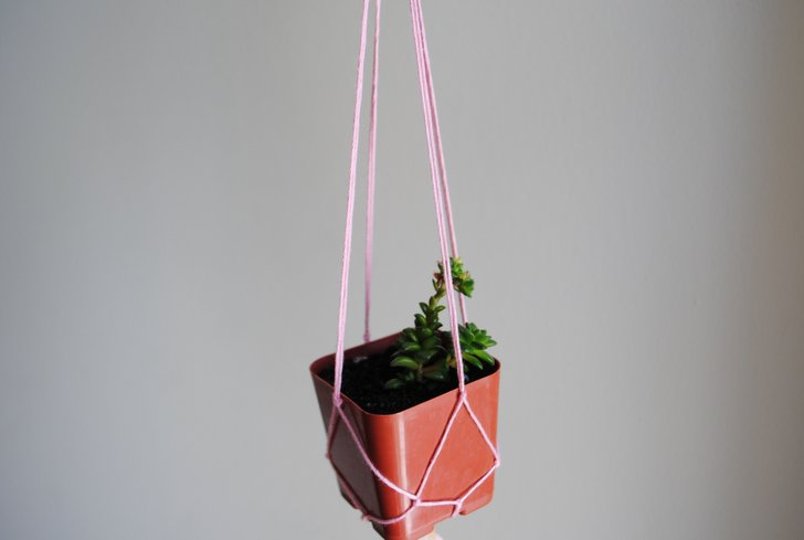 diy learn how to make a knotted string hanging planter from recycled materials inhabitat green design innovation architecture green building - Diy Hanging Planter