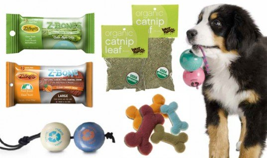 diy pet tips, spay, neuter, pet food, compost, sustainable, eco, pet toys, recycled, animal shelter, how to
